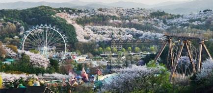 Everland - South Korea's Biggest Theme Park E-Ticket (33% Off!)